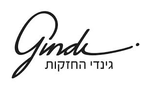 logo-גינדי החזקות