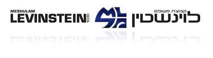 logo-levinstein